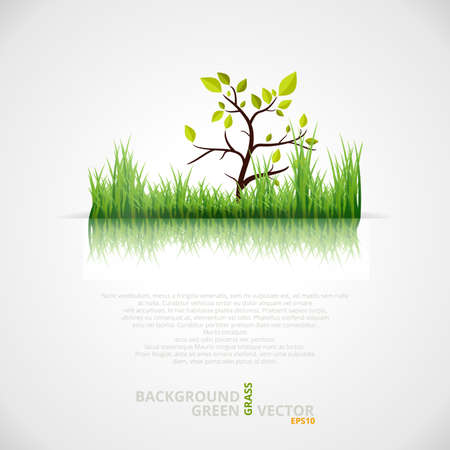 Vector Background with Green Grass and Tree