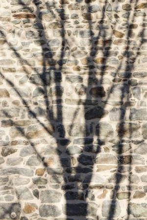 Steinmauer mit Schatten vom Baum Фото со стока