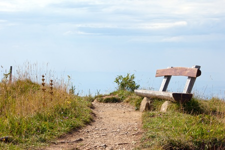wood lawn: Old rustic wood bench by a walking path Stock Photo