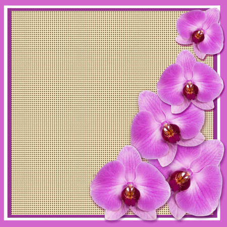 Flower background for the invitation and photo