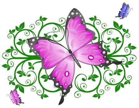 butterfly cartoon: Butterfly