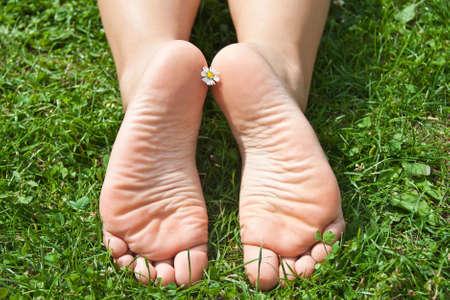bare girl: Womens feet in the grass. Stock Photo