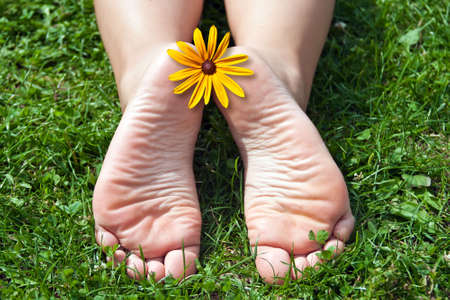 Womens feet in the grass. photo