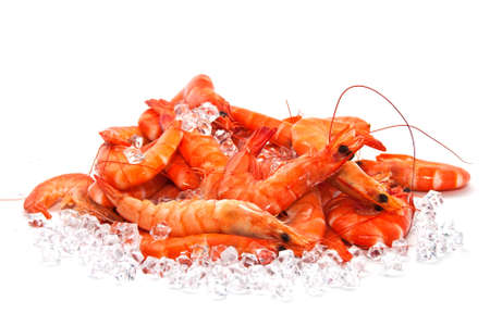 Prawns on Ice Stock Photo - 8018192