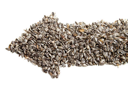 sunflower seeds are laid out in the form of arrows. photo