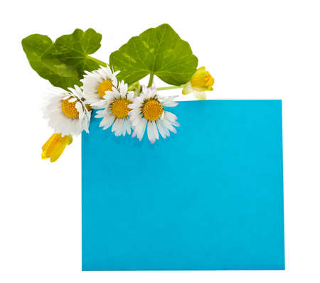 blue space for your text with a bouquet of fresh flowers photo