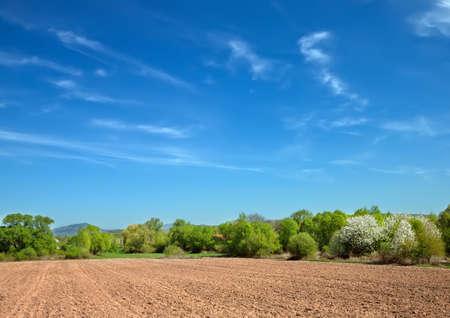 tillage: field for tillage