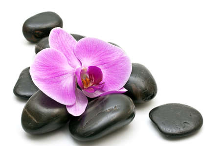 soothe: Pink orchid and zen Stones on a white background