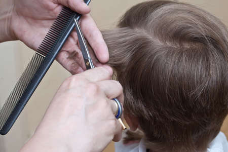 cutting hair at the barber Stock Photo - 10200212