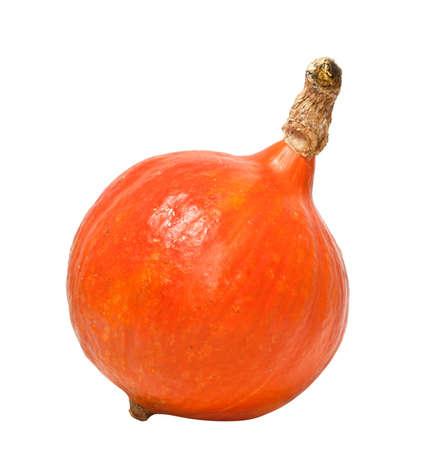 Pumpkin isolated on white background photo