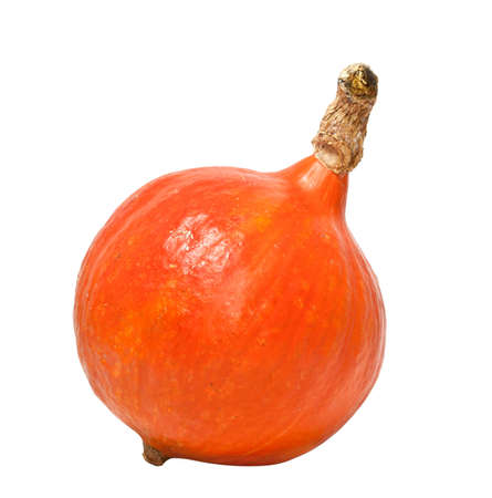 Pumpkin isolated on white background Stock Photo - 10671333
