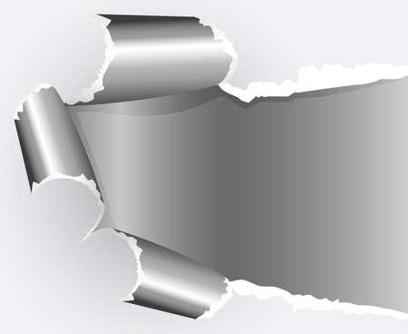 Torn paper. Vector