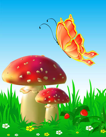 Summer landscape with mushrooms and a butterfly Vector