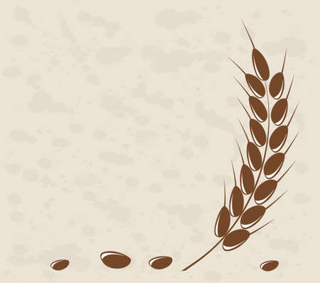 grain fields: Ear of wheat in the grange background Illustration