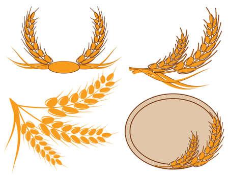ječmen: klas pšenice ve věnci Ilustrace