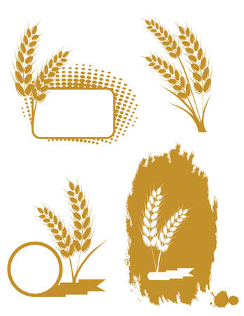 Set with  ears of wheat  Illustration