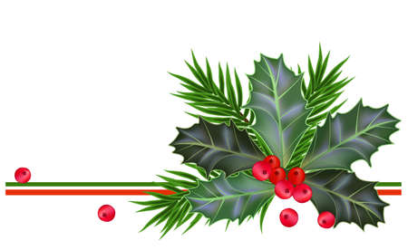 Christmas and New Year card with holly leaves and berries  Ilustração