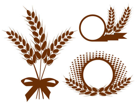 grain fields: Set with  ears of wheat  Illustration