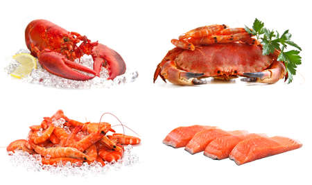 lobster tail: Set of sea food on a white background  Crab, shrimps, lobster, salmon