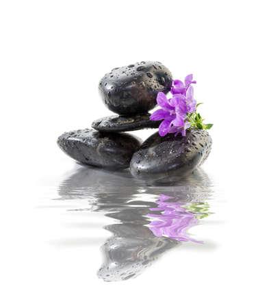 piedras zen: Piedras zen con flores de color púrpura