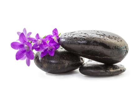 zen Stones with purple flowers Stock Photo - 18136355