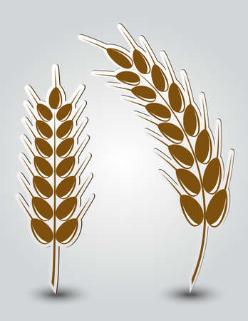 Stickers in the form of wheat ears Stock Vector - 18374525