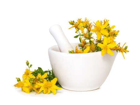 St. John's wort flowers in medical mortar on a white background
