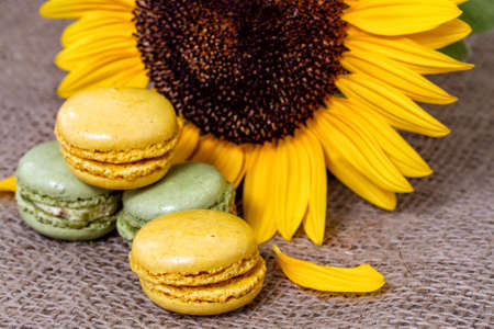 French macarons with yellow sunflowers photo
