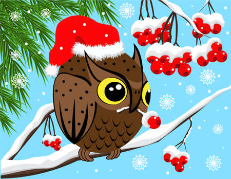 Winter image with red berries and owl Vector