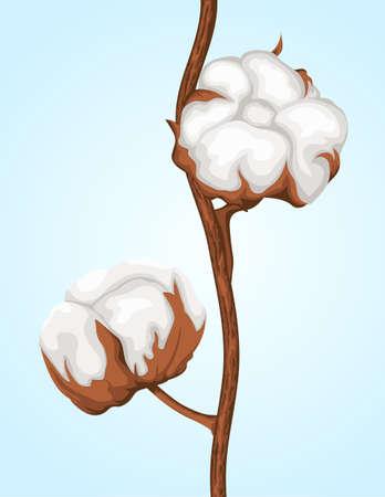 Cotton buds branch Vector