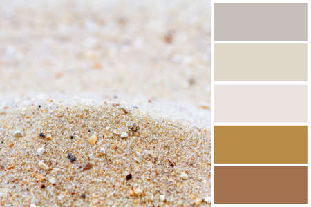 Sand background color palette with complimentary swatches   photo
