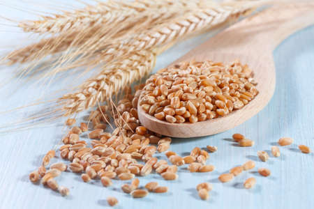 Grains of wheat on the wooden background photo