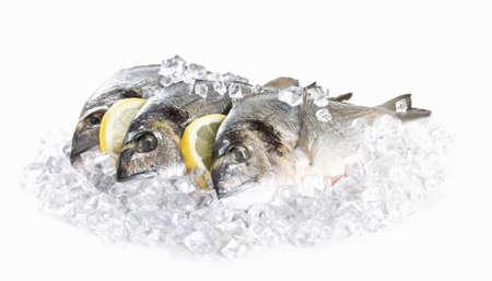 dorado: Fresh dorado in ice Stock Photo