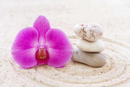 Orchidee met zen stenen in het zand