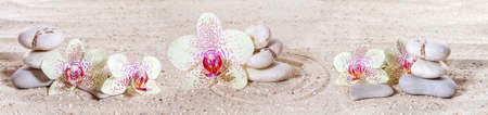 Panorama with orchids and zen stones in the sand Imagens - 30698094
