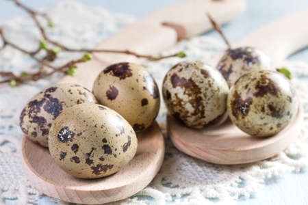 Quail eggs on wooden background closeup. photo