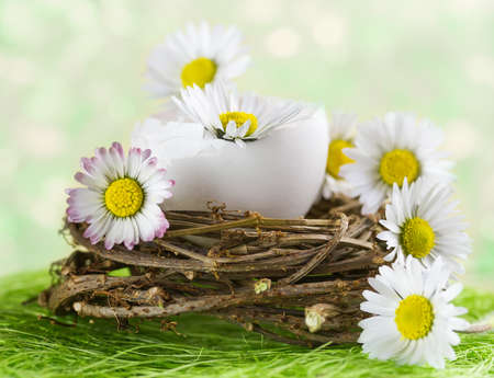 eggshell: Bouquet of daisies in an eggshell. Shallow depth of field. Stock Photo