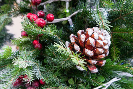 evergreen: christmas tree branch decoration with red berries Stock Photo