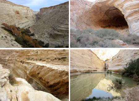 judean hills: Canyon En Avedat and  oasis of the Negev Desert in Israel