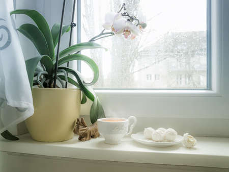 Cup of tea and candy on a rainy day in front of the wet city window