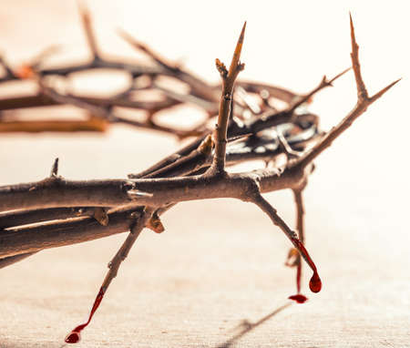 persecution: Crown of thorns with blood dripping. Christian concept of suffering.