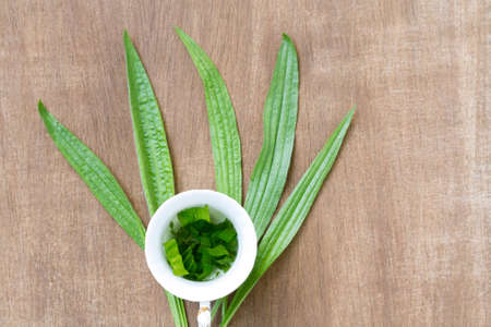 plantain herb: Herbal tea from the leaves of the plantain Stock Photo