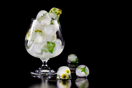 edible: Flowers of chamomile and mint leaves frozen in ice. Isolate on black background Stock Photo