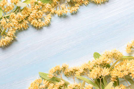 Background with linden flowers on a wooden table and a place for text