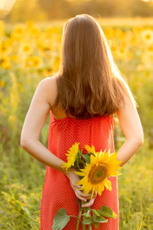 Portrait of young woman in the field with sunflowers Imagens
