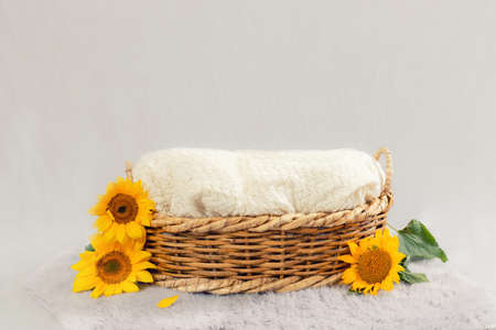 basket for baby decorated with sunflower Imagens