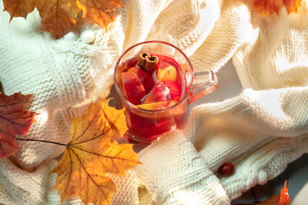 Hot grog, warm sweater and autumn leaves Imagens
