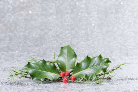 Christmas card with holly leaves and berries