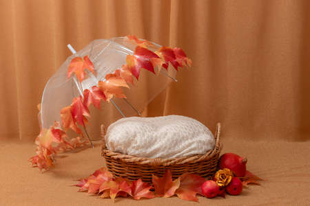 basket for baby decorated with  umbrella and autumn leaves Imagens