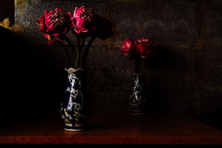 Bouquet de Lotus rose sur fond de briques sombres, éclairage dramatique, mise au point sélective. Banque d'images - 44208152